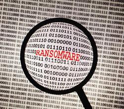 Outil de dechiffrement du ransomware Crysis